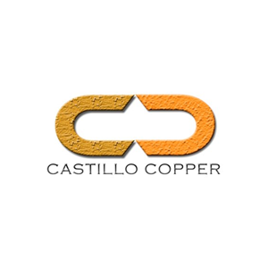 CCZ NI logo.png