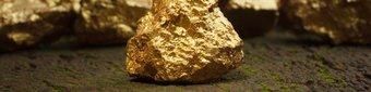 High Grade Gold Hits Struck 350m South of 118koz Gold Deposit